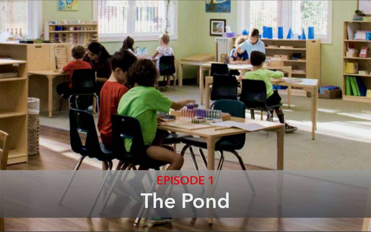 Episode 1 The Pond Thumbnail